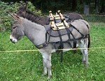 Sawtooth Synthetic Mini Donkey Packsaddle